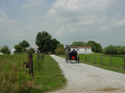 Amish Country Tour